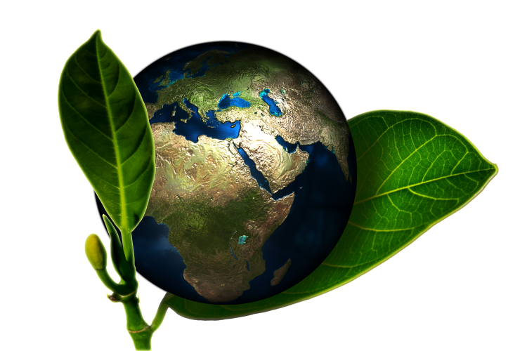 the factors that continue to strain the earths ecosystem All elements on earth have been recycled over and over again how does matter cycle through an ecosystem a: continue reading.