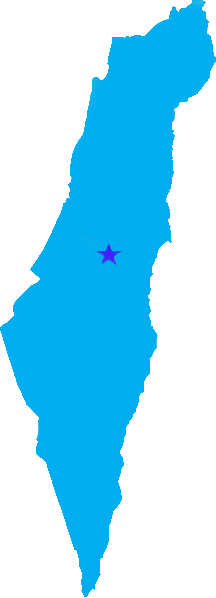 The Four Most Important Languages of Israel