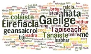 Image result for irish language