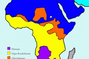 Translating Africa